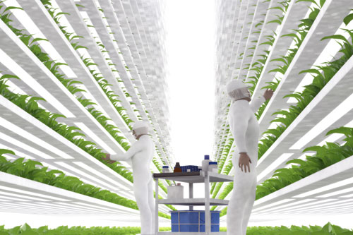 Urban Renewables provides vertical urban farming solutions in cities